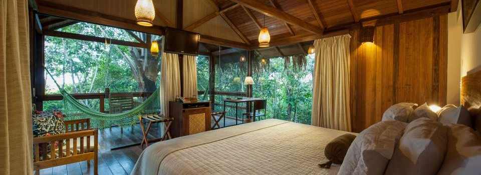 A view from Anavilhanas jungle lodge, you can see the vibrant plant life outside from the bed.