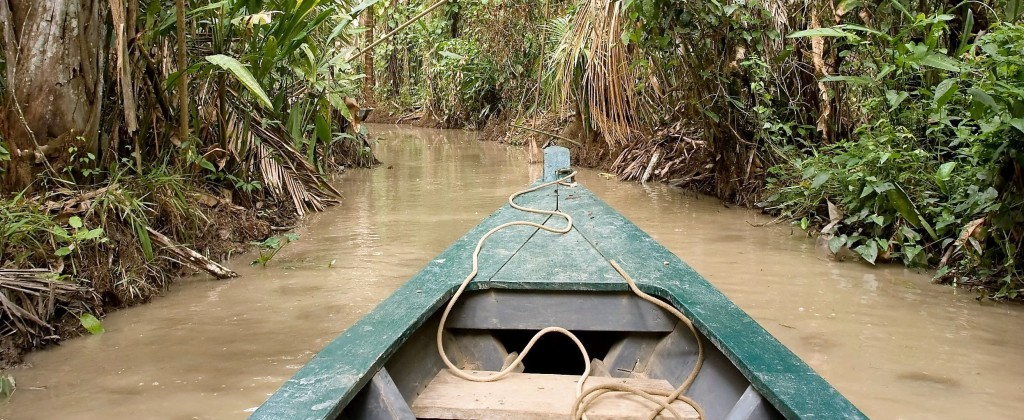 Shot from a canoe heading deep in to the Amazon rainforest.
