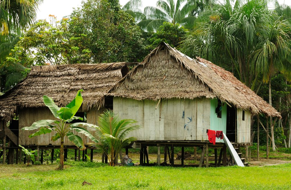 Indigenous communities who live on the edge of the Amazon river have adapted to life here.