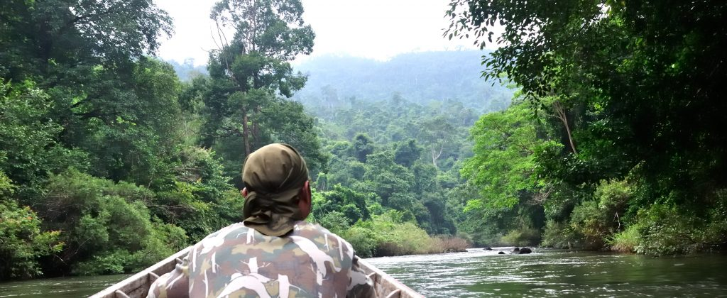 Traveling up the Amazon river in a small boat.