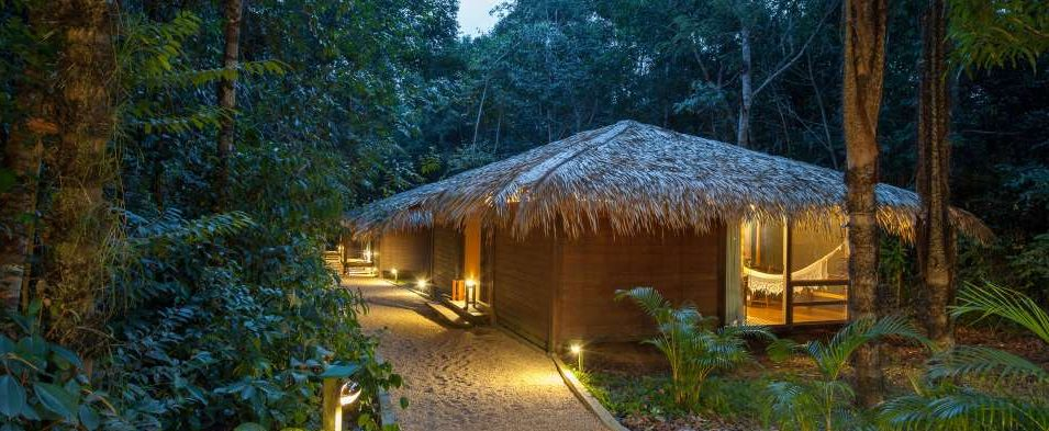 A dimly lit lodge in the heart of the Amazonian jungle.