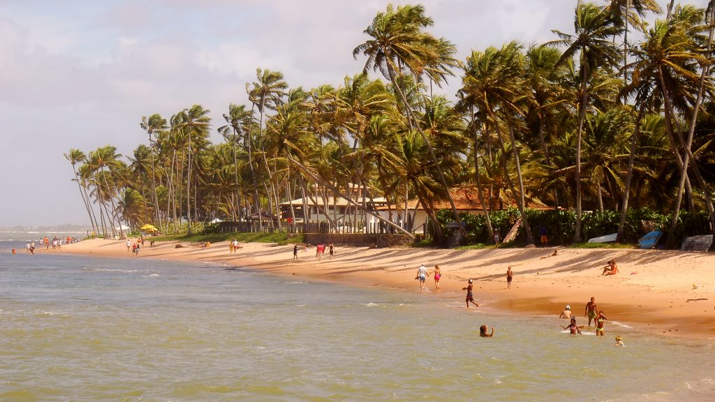 People enjoy the sunsplashed beach at praia do forte.
