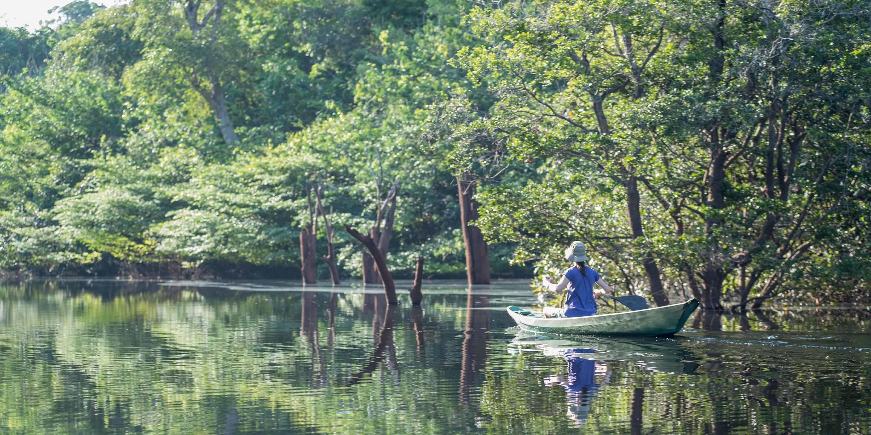 balade en Canoe Anavilhanas lodge