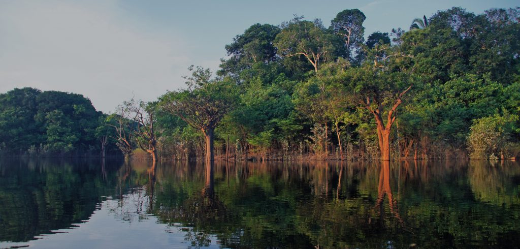 An artistic snapshot of the Amazon river at dusk.