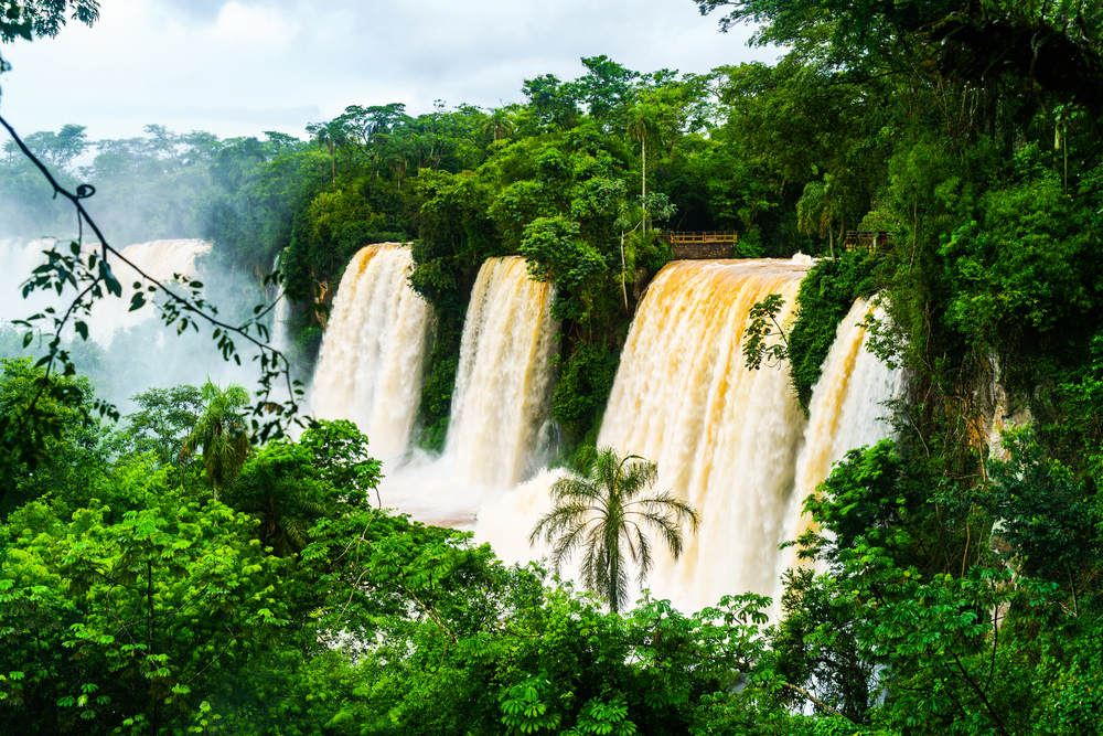 Three powerful cascades at Iguacu, seen from the Argentinian side.