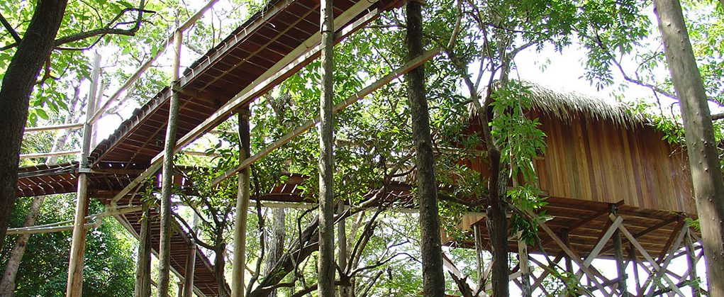 Looking up at on of the walkways of the Juma lodge, the jungle lodge built on stilts.