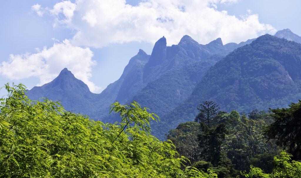 Mountains surrounding Tijuca forest in Rio de Janeiro.