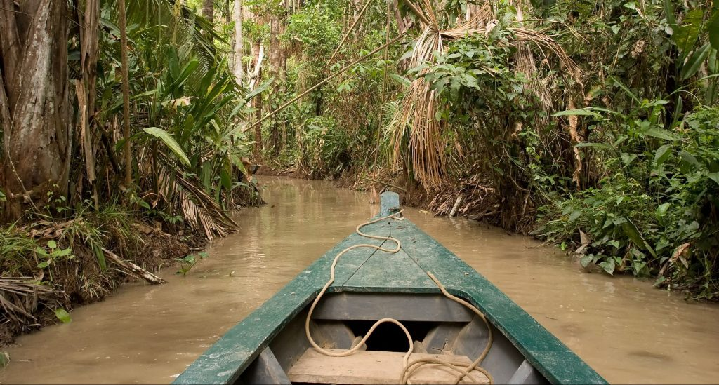 A canoe heads deep into the Amazon rainforest.
