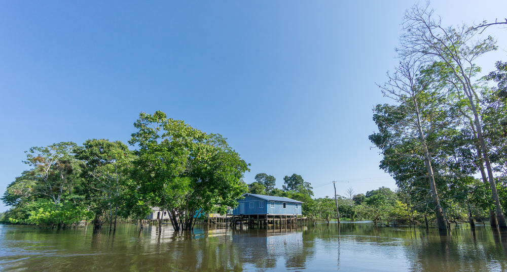 The houses near the river are built on stilts so as to accommodate the rising and falling levels of the river water.