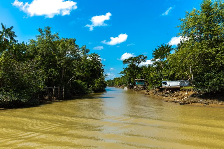 A remote Igarapé in the Amazon rainforest.