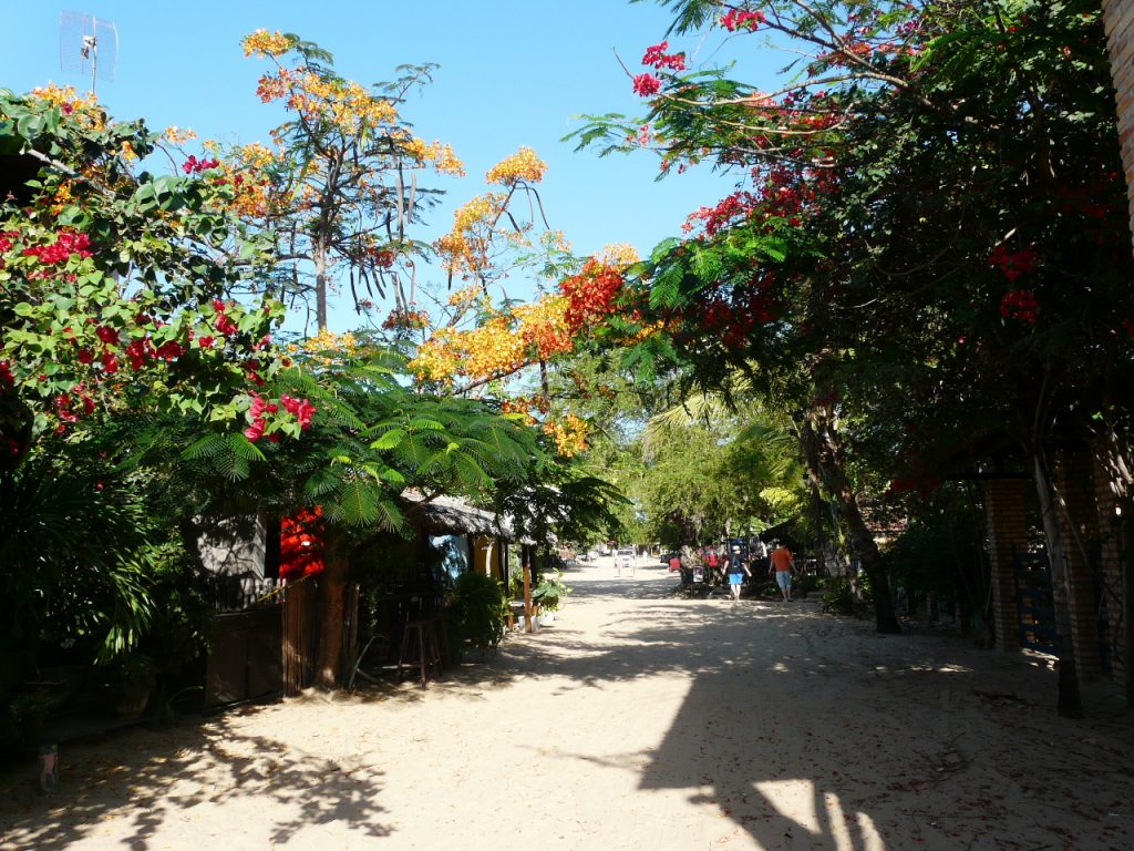 The beautiful sandy streets of Jericoacoara with colourful flowers bordering them.