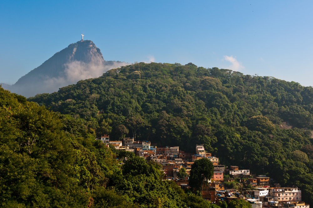Tijuca forest in Rio, with O cristo redentor in the background.