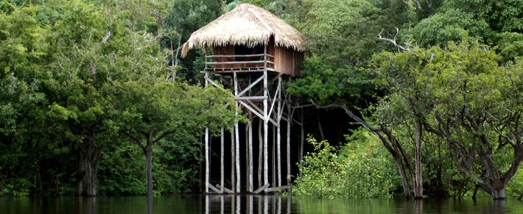 One of the bungalows of the Juma lodge, built on the edge of the river on tall stilts.