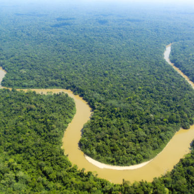 Shot from above of solimoes river in the Amazon.