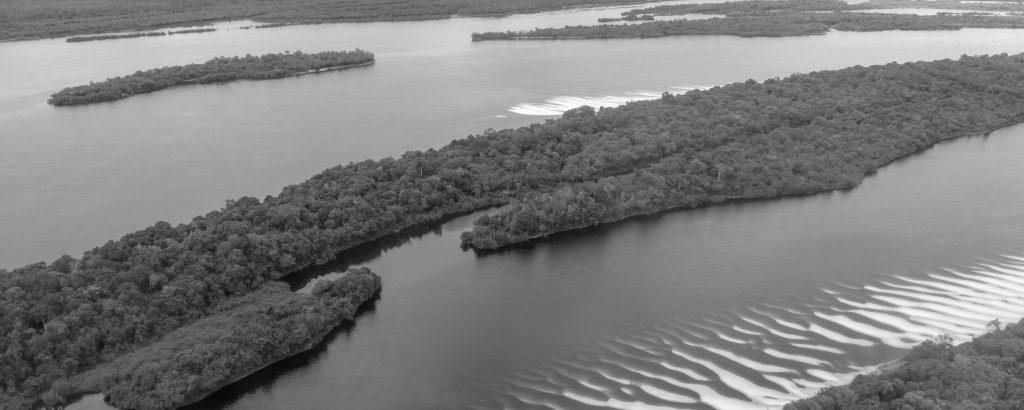 Black and White of Anavilhanas archipelago.